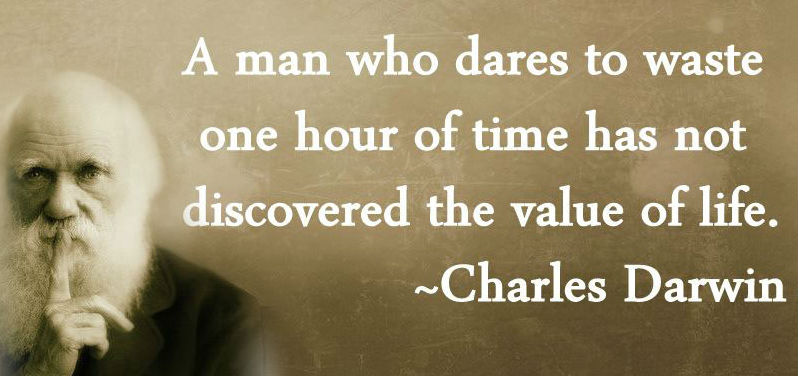 motivational-quote-on-value